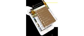 App iOS Android con appYgo